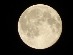 WX350で撮影した満月